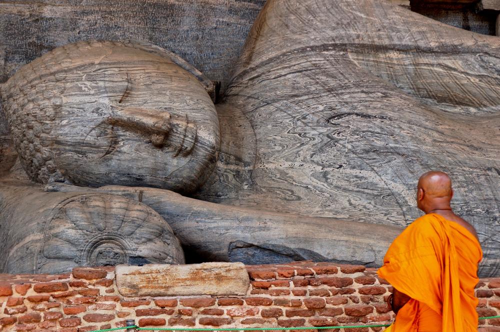 shutterstock 1189061548 - II Международный Форум«Современная традиционная народная медицина и духовные практики»  на Шри - Ланке