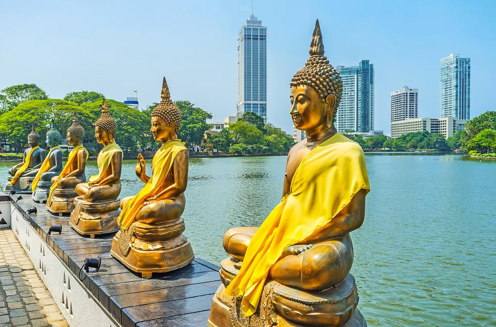 shutterstock 689355364 - II Международный Форум«Современная традиционная народная медицина и духовные практики»  на Шри - Ланке