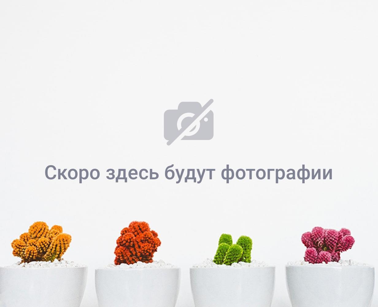 VIP отдых в Доминикане